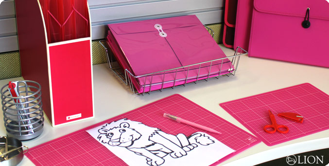 PINK/RED OFFICE PRODUCTS