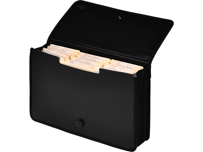1 Wallet 3-Inch Gusset Lion Expand-N-File Poly Expanding Wallet Transparent Blue Letter 9-1//2 X 12-Inch 48160-BL
